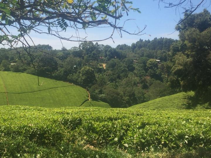 Experiencing Nairobi (part2)